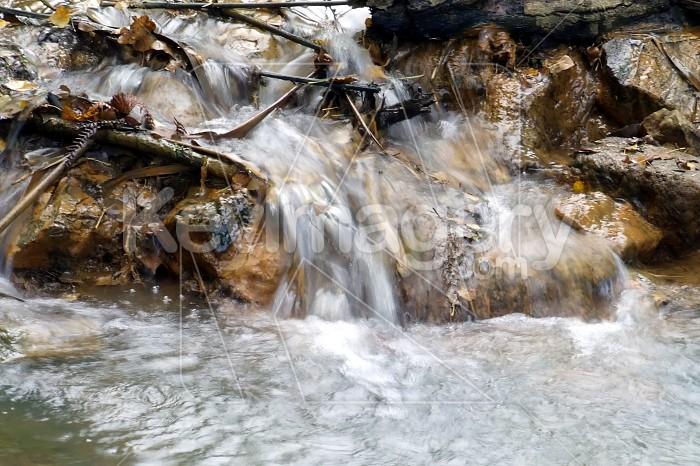 creek Photo #982