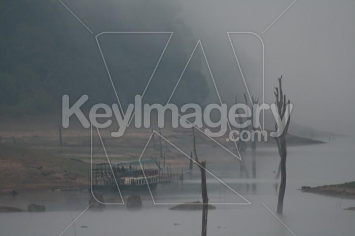 In the fog Photo #1417