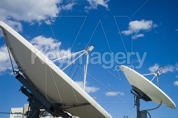 The Dish Photo #1804