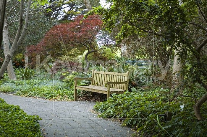 The Park Bench Photo #1795