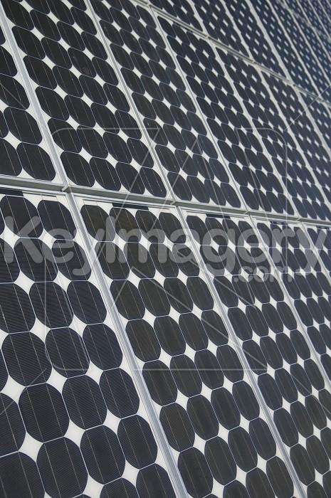 The Solar Panels Photo #2035