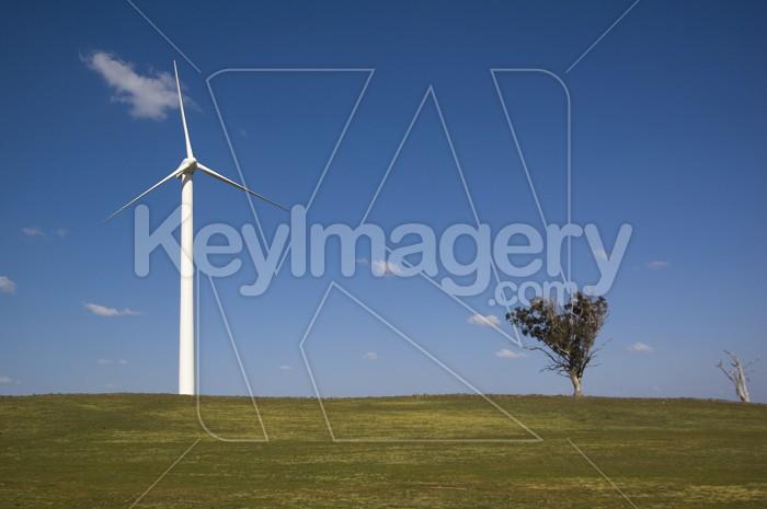 The Wind Turbine Photo #4567